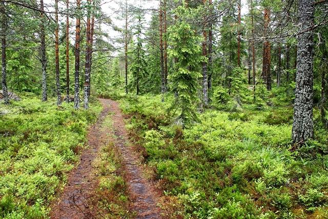 Aan de steiger van Agö Storhamn