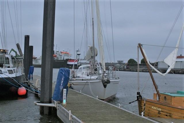 Lagerwal in Cuxhaven met een stevige wind