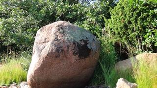 Het eiland is onbegaanbaar, maar 'het steentje' is kolossaal en het aanschouwen waard.