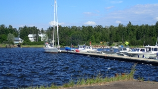 Lagerwal in Lapaluoto
