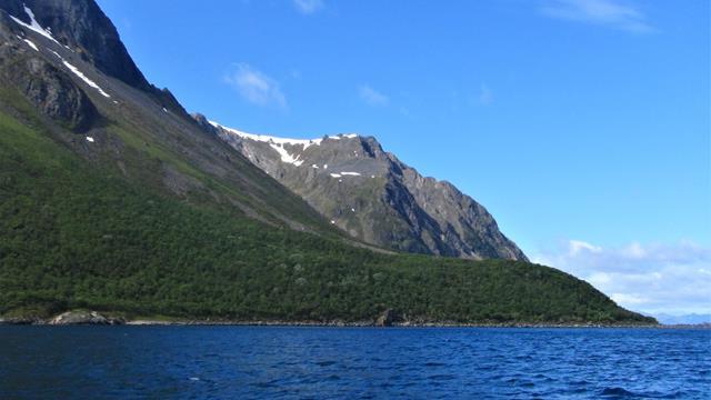 Grytøya
